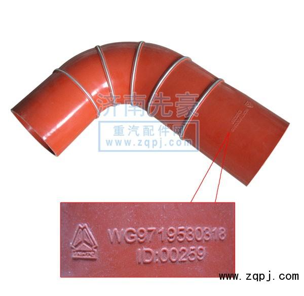 胶管WG9719530318/WG9719530318