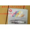 VG1560080701火花塞(CNG)