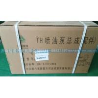 TH喷油泵总成VG1096080160
