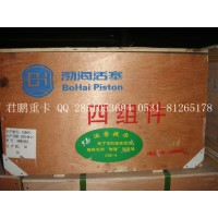 济南下载雷火电竞亚洲供应滨州渤海四配套612600030047