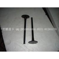 济南君鹏供应进气门,排气门VG1096050015
