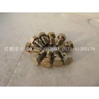济南君鹏供应空心螺栓VG1246040022