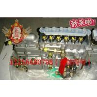 供应VG1092080120重汽豪沃斯太尔发动机喷油泵总成