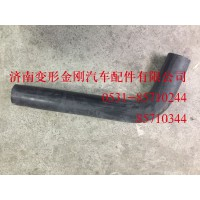 WG9925531009下水室胶管(T7H)