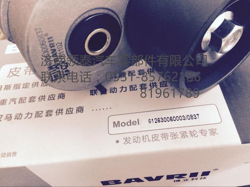 雷火电竞app iosWP5 WP12 WP13/612630060003/612630060837