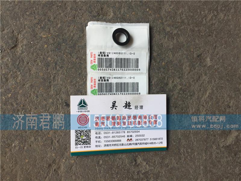 济南君鹏供应vg1246080111球面垫圈/vg1246080111
