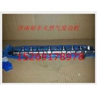 潍柴WP7电喷发动机共轨管总成 610800080061