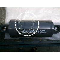供应豪威码头牵引车液压举升油缸TZ53717300165