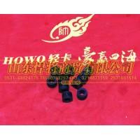 WG9725530151橡胶垫块【HOWO豪沃轻卡】