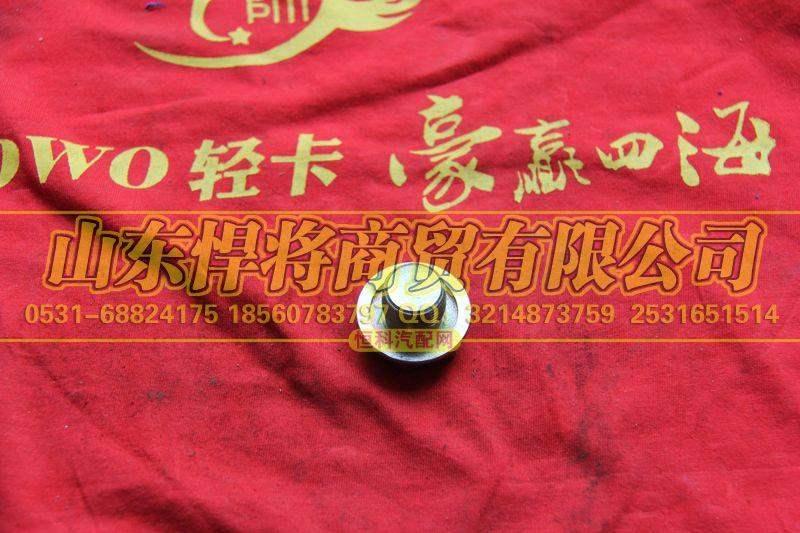 24T-01072放油孔塞【HOWO豪沃轻卡】/24T-01072
