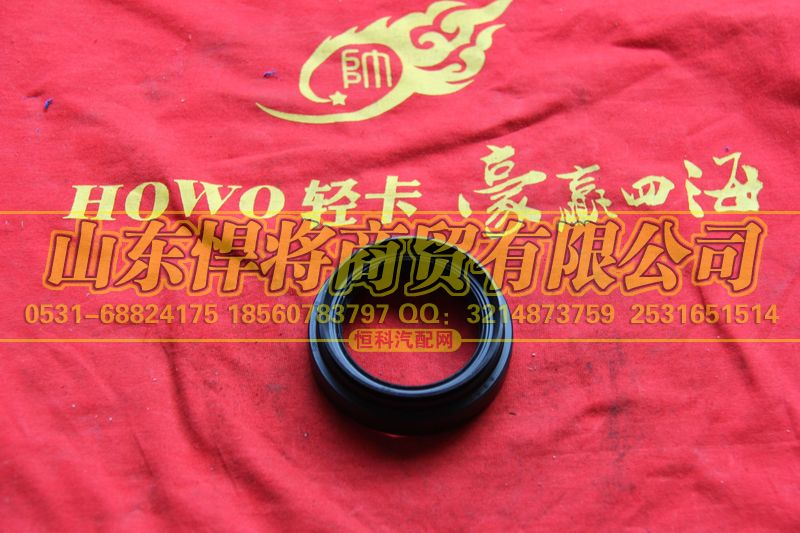 2402Q01-060-F油封总成【HOWO豪沃轻卡】/2402Q01-060-F