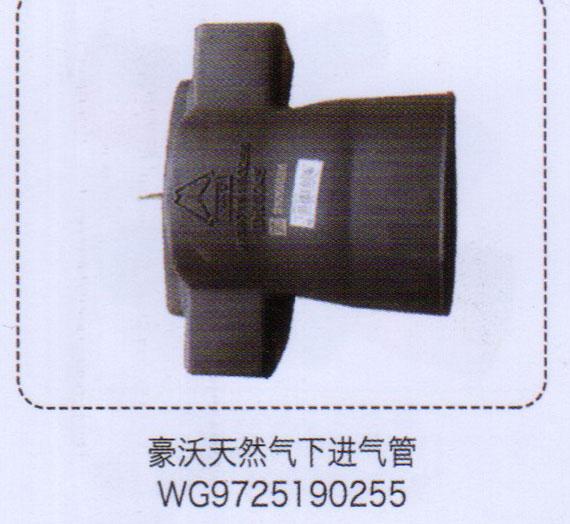 豪沃天然气下进气管WG9725190255【重汽储气筒】/WG9725190255