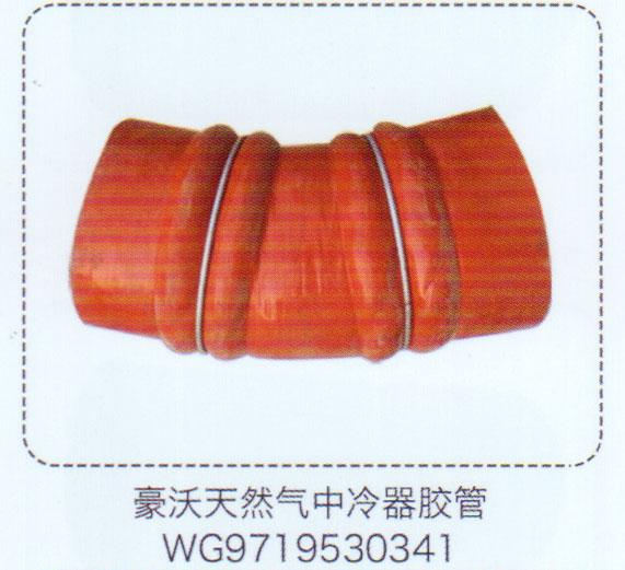 WG9719530341