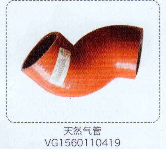 VG1560110419