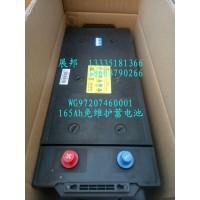 165Ah免维护蓄电池