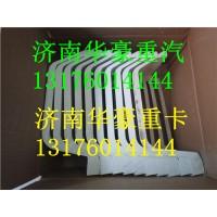 陕汽德龙X3000驾驶室踏板护罩