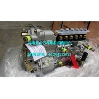 重汽重庆燃油喷射泵 VG1560080020
