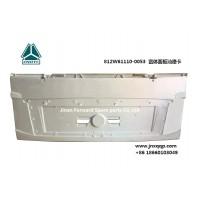 812W61110-0053 宽体面板汕德卡 panel