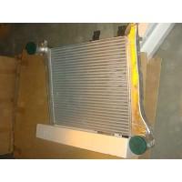 HOWO小马力中冷器总成WG9725530130