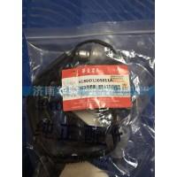618DD1205011A NOX传感器(国5)12L