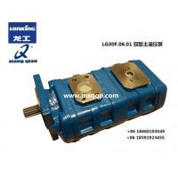LG30F.06.01双联液压泵Hydraulic pump