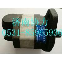 TZ53717300230  齿轮油泵