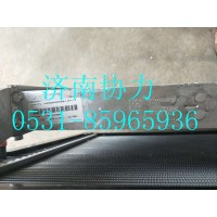 WG9925530127  小中冷器总成(T7H)