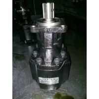 新大威自卸车 翻斗车海沃齿轮泵 海沃100 后出油 6齿 油缸齿轮泵