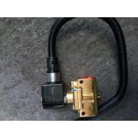 082V11103-0009主低压电磁阀-卡杰隆