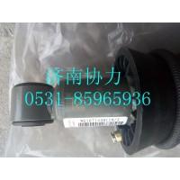 WG1671430119  前悬减振器总成(H18)