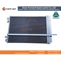 WG1664820116   冷凝器 Side condense assy