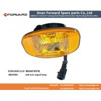 DZ96189812110  新M3000侧转向灯带side turning lamp