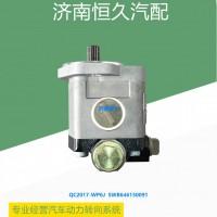 QC20/17-WP6J SWB646150091 转向齿轮泵
