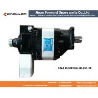 GEAR PUMP100L-BI-250-2R 液压举升分体泵