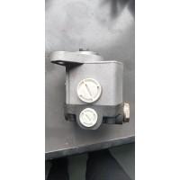 转向油泵玉柴6M-2A 三孔 M36D8-3407100A