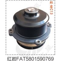 红岩C13泵头FAT5801590769促销价190元