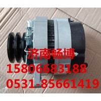 雷沃发电机JFZ161  发电机T845010025