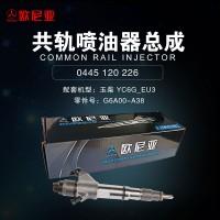 玉柴YC6G EU3共轨喷油器总成G6A00-A38【欧尼亚