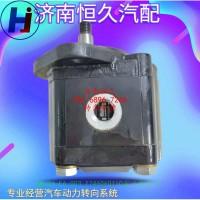 CBJ26-E6-003_T74606011C雷沃长治液压泵