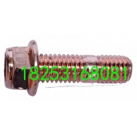 增压器螺丝(10*53)加长 W1202