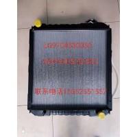 水箱散热器总成LG9704530050