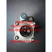 重汽豪沃转向油泵、助力泵WG9731471225