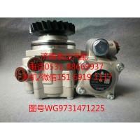 重汽豪沃转子泵、助力泵WG9731471225