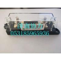 WG9725580006   100A保险装置