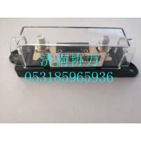 WG9725580016  200A保险装置