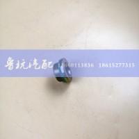 桥壳磁性螺塞STR158633075