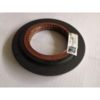 WG7117329001-1原厂差速器油封座带油封