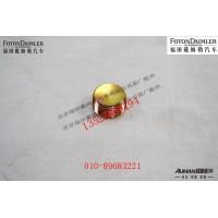 后轮边磁性螺塞R485D111-3104017