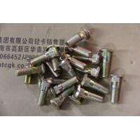 1700C-173突缘螺栓(镀锌)