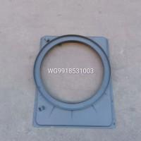 WG9918531003护风罩